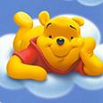Winie The Pooh (7)